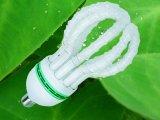 طاقة - توفير مصباح [150و] خيزرانيّ لوطس [تري-فوسفورس] [كمبكت] [ليغت بولب]