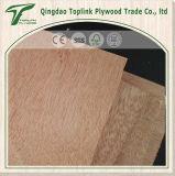 Face mélangée de Bintangor de faisceau de bois dur et contre-plaqué arrière de meubles