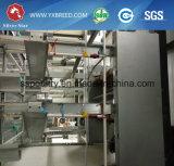 El equipo de las granjas avícolas de la capa de tipo H JAULAS DE POLLO