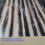 MDF da melamina da mobília 1220*2440mm do GV