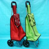 Портативная, котор катят складывая вагонетка хозяйственной сумки бакалеи руки доказательства воды