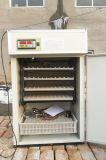 Incubateur automatique d'oeufs de volaille industrielle pour 352 oeufs