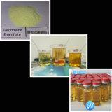 Da hormona Injectable dos esteróides do ciclo da fonte drogas líquidas da injeção de Trenbolone Enanthate