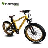 在庫のAMSTde 03 750W Bafangモーター脂肪質のタイヤの電気バイク