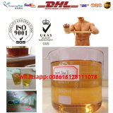 Trenbolone líquido amarelado escuro semiacabado Enanthate 100mg/Ml para o Bodybuilding