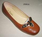 Senhoras vestir as sapatas (ZYD026)