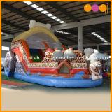 Barco de la India la diapositiva (AQ01406)