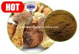 Reiner natürlicher Agaricus Blazei Auszug/Polysaccharide 20%-50%, 10:1