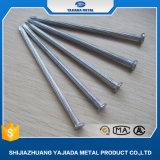 De Spijkers van het staal, Concrete Spijkers, de Spijkers van de Draad aan de Markt van het Midden-Oosten