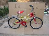 2013 eben Kind-Fahrrad-/Children-Fahrrad Sr-Jd20