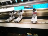Geschweißte höchste Präzision CNC-hydraulische Presse-Gesamtbremse mit Servomotor