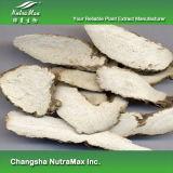 100% натуральные Dahurian Анжелика root распакуйте 5: 1, 10: 1 Tlc