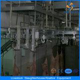 Pig Slaughter Equipment/300 Head Pig Slaughtering Machine Line