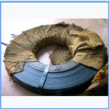De blauwe Aangemaakte Riem van de Verpakking van het Staal