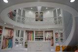 미러 (BY-W-11)를 가진 높은 광택 있는 옷장 완료