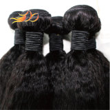 Trame peruviane diritte crespe dei capelli del Virgin di alta qualità delle trame all'ingrosso dei capelli