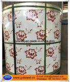 Matériaux PPGI estampé par configuration de décoration