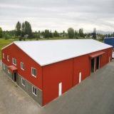 Entrepôt léger galvanisé par modèle de structure métallique de construction
