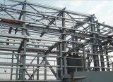 Здание фабрики мастерской конструкции стальной структуры