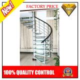 Escadaria espiral interna/ao ar livre com etapa de vidro ou de aço