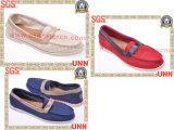 Chaussures de toile pour les femmes (SD8219)
