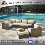Insieme profondo buono della disposizione dei posti a sedere di Furnir Wf-17077 7PC