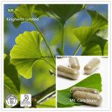 Kingherbs' extrato de folha de Ginkgo Biloba 24% 6% 5ppm por HPLC