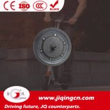 12V 24V 36V 8개 인치 지능적인 2개의 바퀴 DC 모터