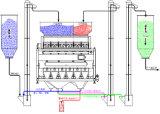 CCD a cores de marisco a triagem da máquina para corte de alho