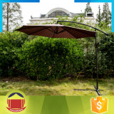 Зонтик сада высокого качества горячий продавая