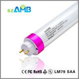 5years Warranty T8 LED Tube Light with 110lumen/W