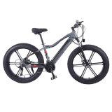 OEM/ODM Groothandel Mountain Electric Bike met volledige suspenson