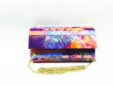 Madame Handbag Acrylic Eveningbag d'embrayage de mode