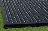 Stabiele RubberMat, Dierlijke RubberMat, de Rubber Stabiele Mat van de Koe