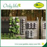 Planteur vertical matériel de mur de feutre d'Onlylife PE& pour le jardin
