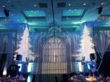 40W, rotación de las luces de Navidad en el interior del proyector para la venta