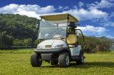 Witte Kleur 2 de Kar van het Golf Seater met de Plaat van de Caddie