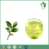 Té natural Aromaterapia Árbol de cuerpo Aceite de masaje