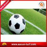 Het beste Synthetische Gras van het Voetbal voor Sporten