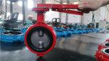 Válvula industrial de duplo eixo (WDS)