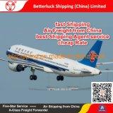 Porte à porte de l'Agent d'expédition de la Chine au Népal Katmandou service logistique