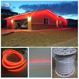 110V LED 가벼운 2wires는 유연한 색깔 LED 네온을 골라낸다