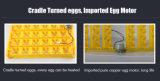 アップグレードされた二重力36の卵の小型卵の定温器のふ化場機械