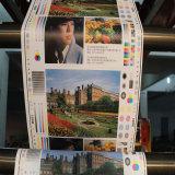Farben Flexo Drucken-Plastikrollenmaschine der Geschwindigkeit-6