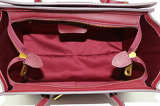 Trendy Hot vendre Hig fin dessins et modèles de sacs à main pour Womens Luxe