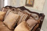 Strato classico del tessuto dell'oggetto d'antiquariato del sofà del salone con il blocco per grafici di legno