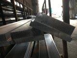 Profil d'extrusion d'alliage d'aluminium de radiateur pour la porte et le guichet 04