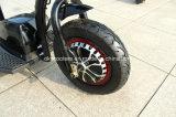 350W 500W 허브 모터 전기 세발자전거 3 바퀴 전기 스쿠터