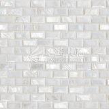 Azulejo de mosaico biselado blanco puro del borde 10*20m m del shell de la perla de agua dulce de la madre