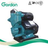 Pompa automatica autoadescante elettrica nazionale del collegare di rame con il micro interruttore